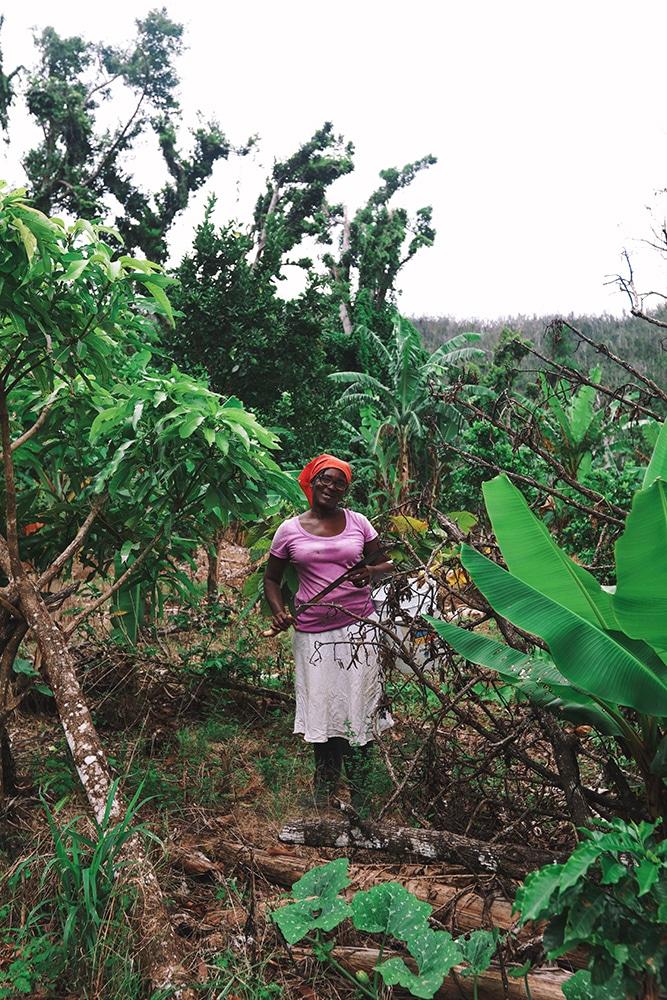 Felecool-Dominica-paradis-pa-jord - 61363D39-2249-4DE4-852D-B934DA0E4254.jpg
