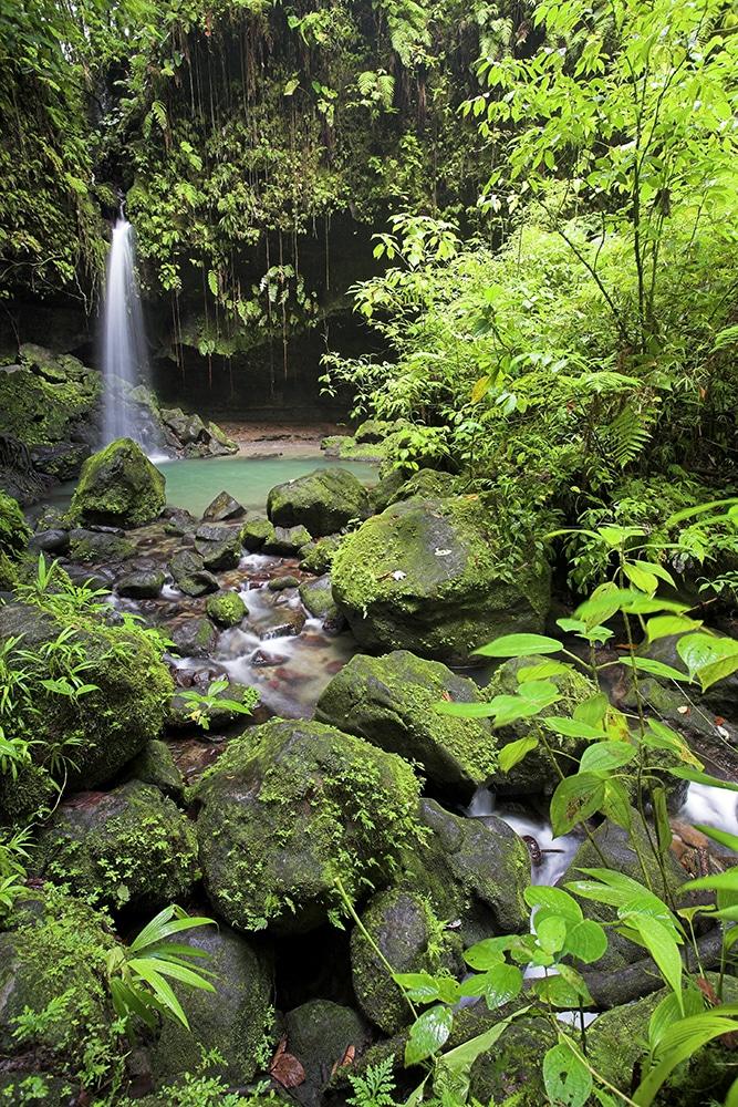 Felecool-Dominica-paradis-pa-jord - AdobeStock_1118282.jpeg
