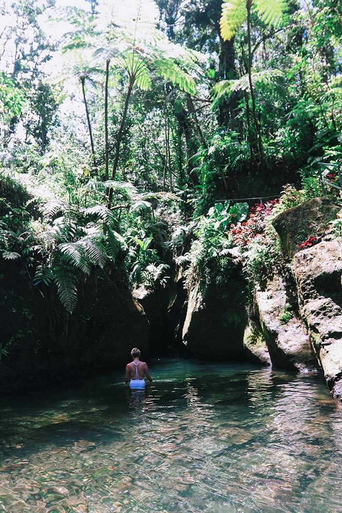 Felecool-Dominica-paradis-pa-jord - CBBC981D-9E18-48A6-8084-52221CA2AA1A.jpg