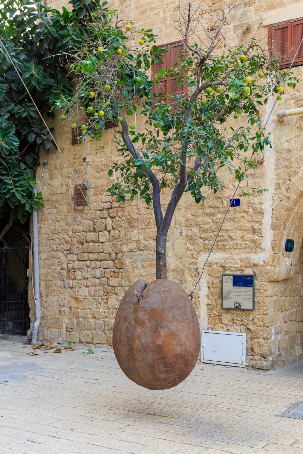Israel-kontrasternes-land-felecool - AdobeStock_129116230.jpeg