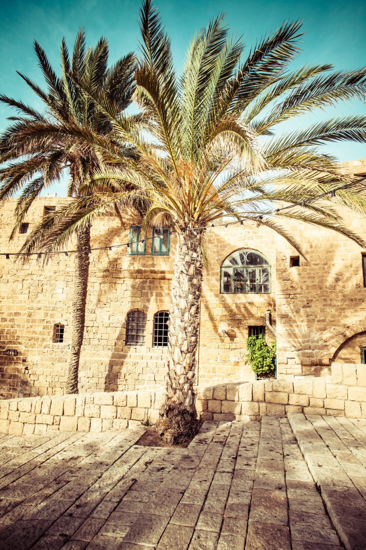 Israel-kontrasternes-land-felecool - AdobeStock_58989543.jpeg