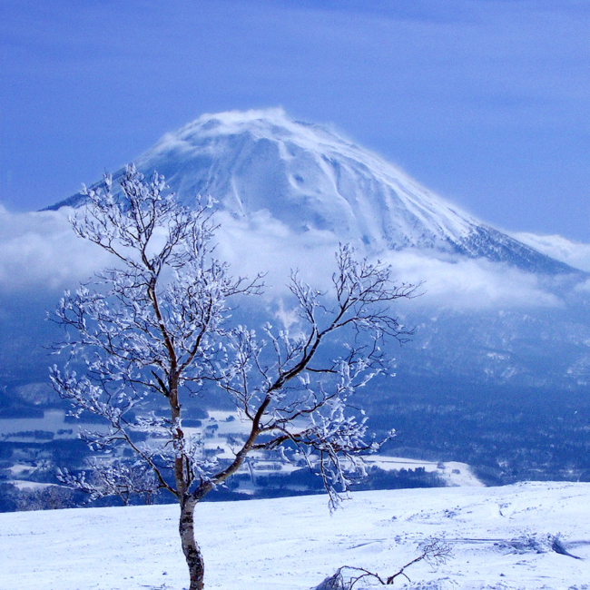 Japan-Niseko-Peter-Esben - AdobeStock_1027532.jpeg