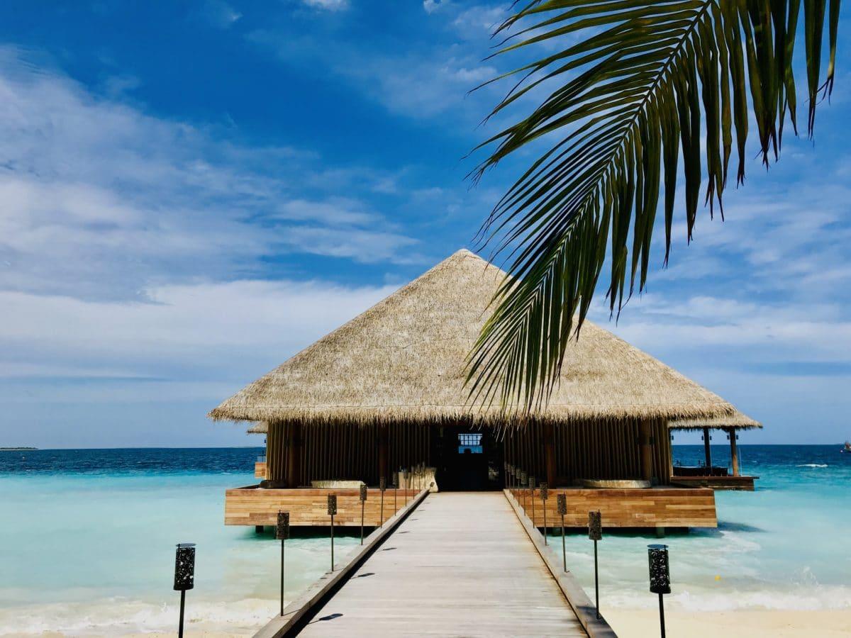 Joali,Maldiverne - IMG_2503.jpg