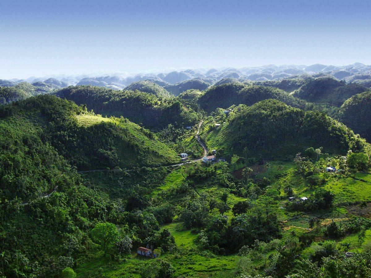 Rohan-Marley-guld-ø-Jamiaca - Blue-Mountains.jpg