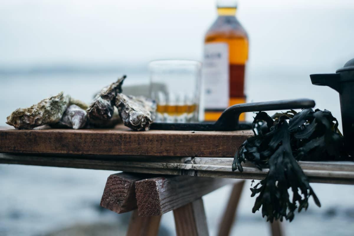 Skaldyr-whiskeysmagning-skærgaarden - beach-4039.jpg
