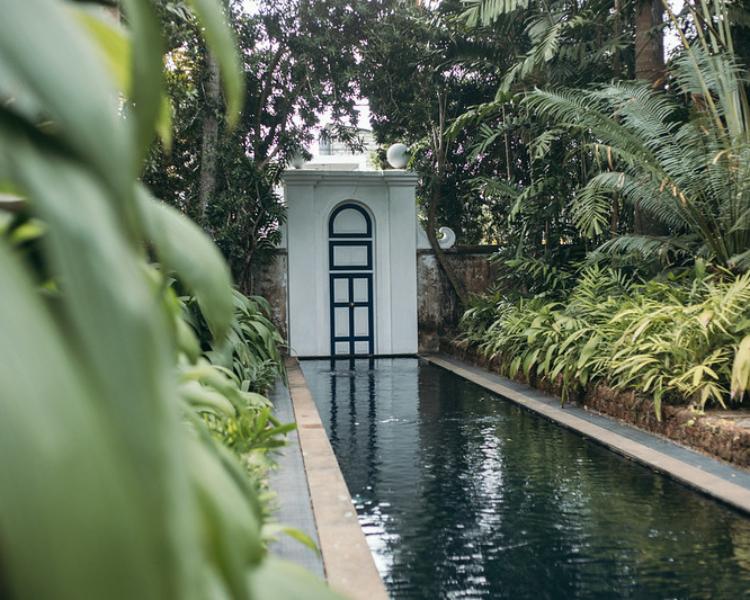 Srilankas-bedste-boutique-hoteller - 48436334386_714b5d4a86_c