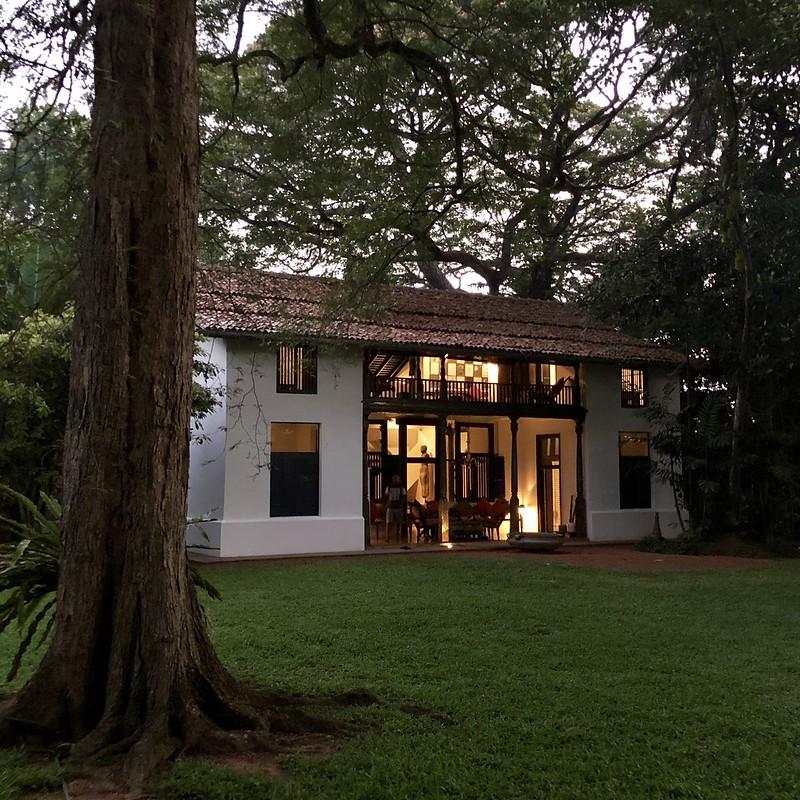 Srilankas-bedste-boutique-hoteller - 48436336707_fc8487ff8a_c